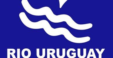 Rio Uruguay Seguros Argentina